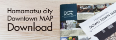 downtownmap